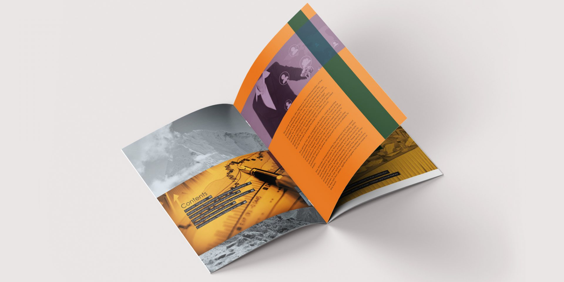 Nepal Business Forum Brochure Design